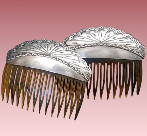 hairclips_0.png