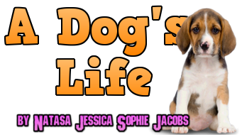 A dogs life.png