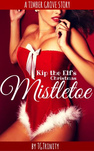 TG023 Kip The Elf's Christmas Mistletoe.jpg