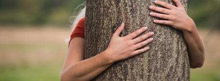 Tree_Hugger_Hands_1.jpg